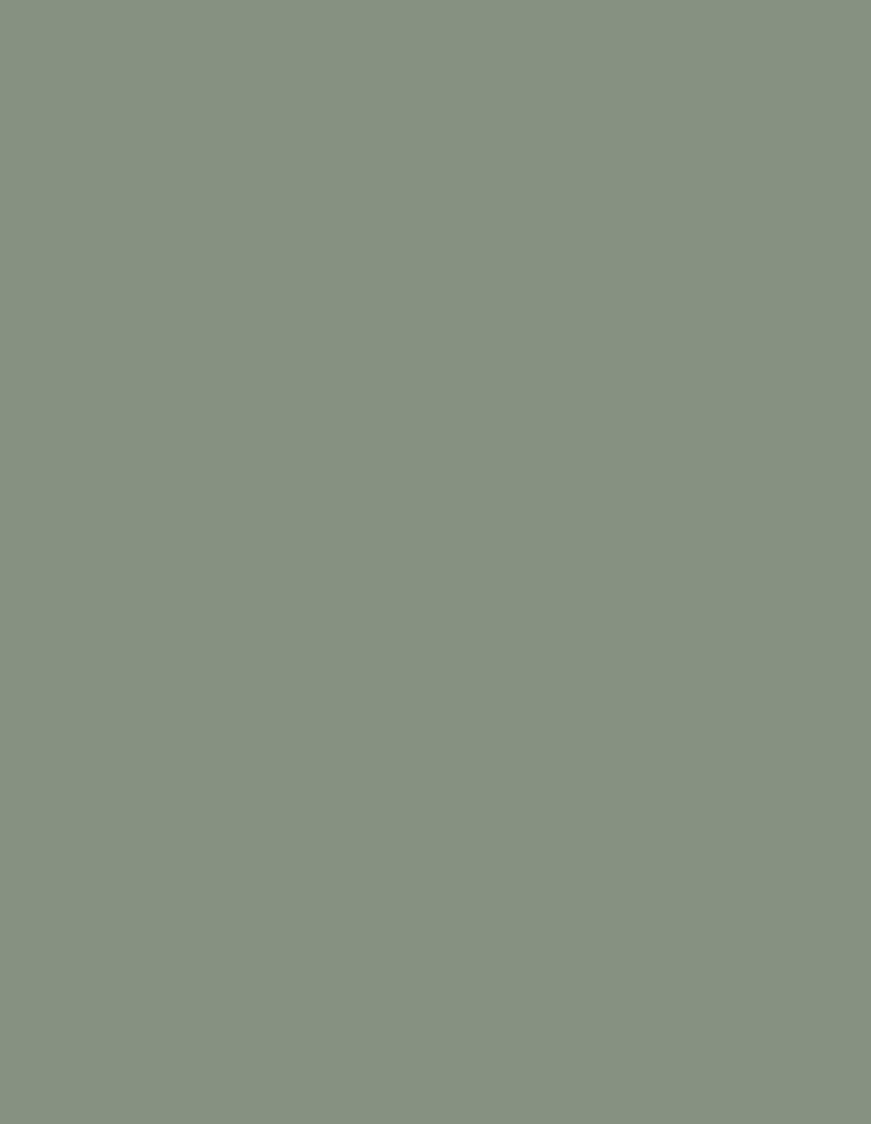 door star verde muschio